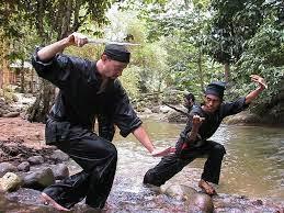 ashim blog, seni bela diri tradisional, bela diri terkenal, bela diri mendunia, bela diri, sabung, membela diri, pencak silat, beladiri indonesia, bela diri melayu