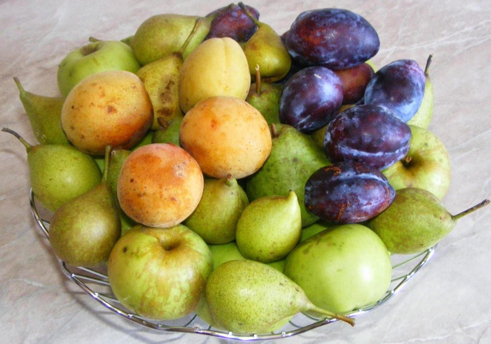 fructe, fructe proaspete, fructe sanatoase, fructe romanesti, retete cu fructe, fructe pentru gratar, fructe pentru prajituri, fructe pentru desert, fructe pentru frigarui, mere, prune, piersici, pere, retete si preparate culinare cu fructe, fructe dulci,