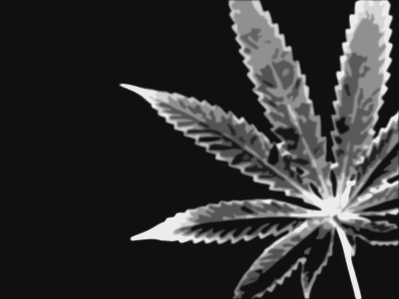 http://1.bp.blogspot.com/-hnaI47TN3Og/TayC8LTVFSI/AAAAAAAAACU/X1DeZF7fVpA/s1600/Marijuana_by_xapax.jpg