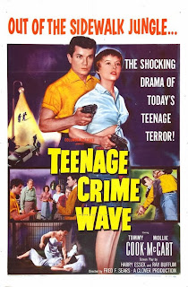 Teenage Crime Wave 1995