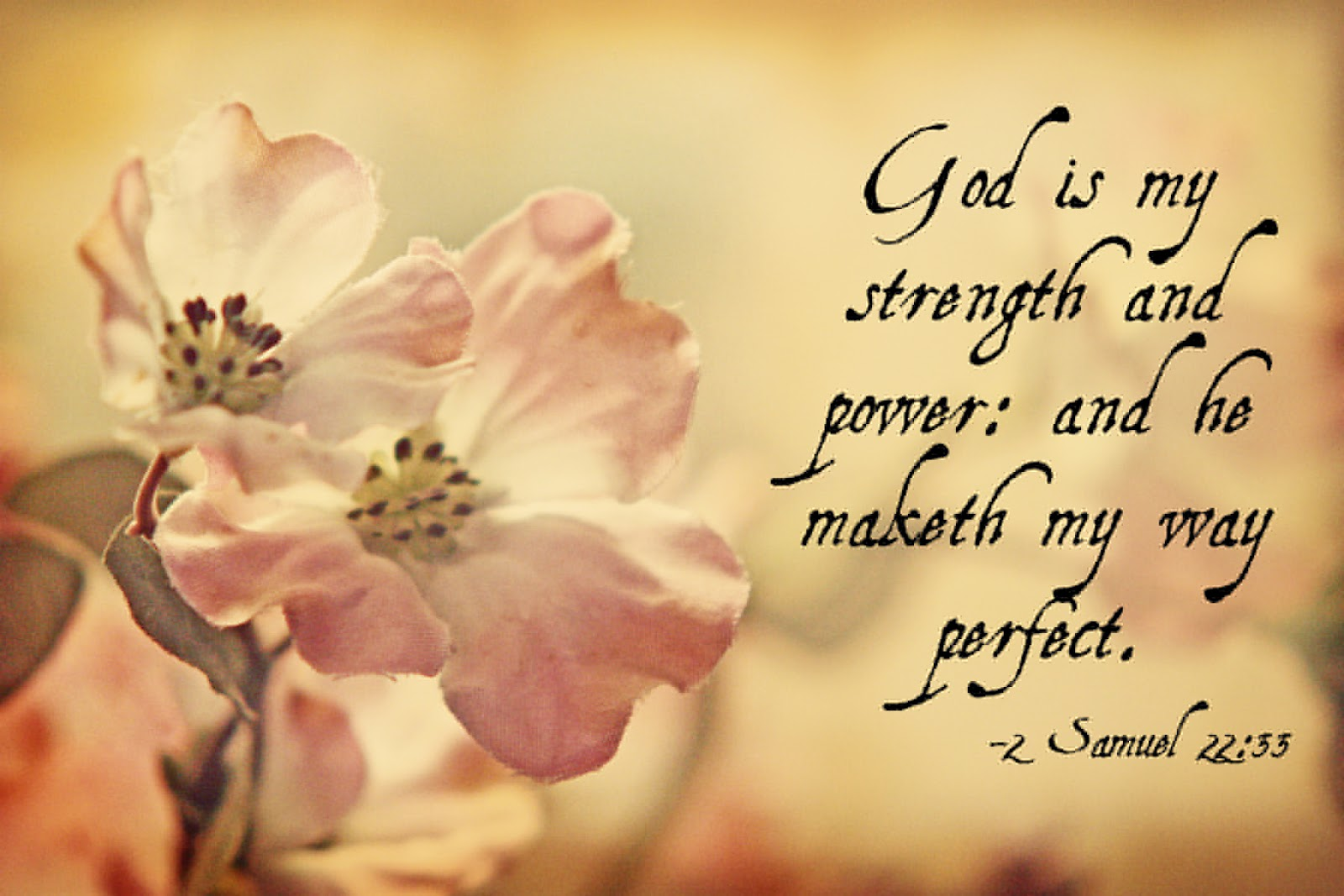 Bible Quotes About Hope Living With Hope Counseling Finding Hope And Strength In Scripture