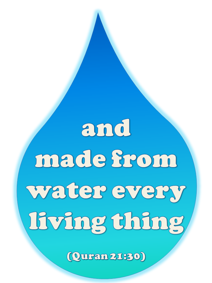 Arabic and Islamic Blog: Water Aid Posters
