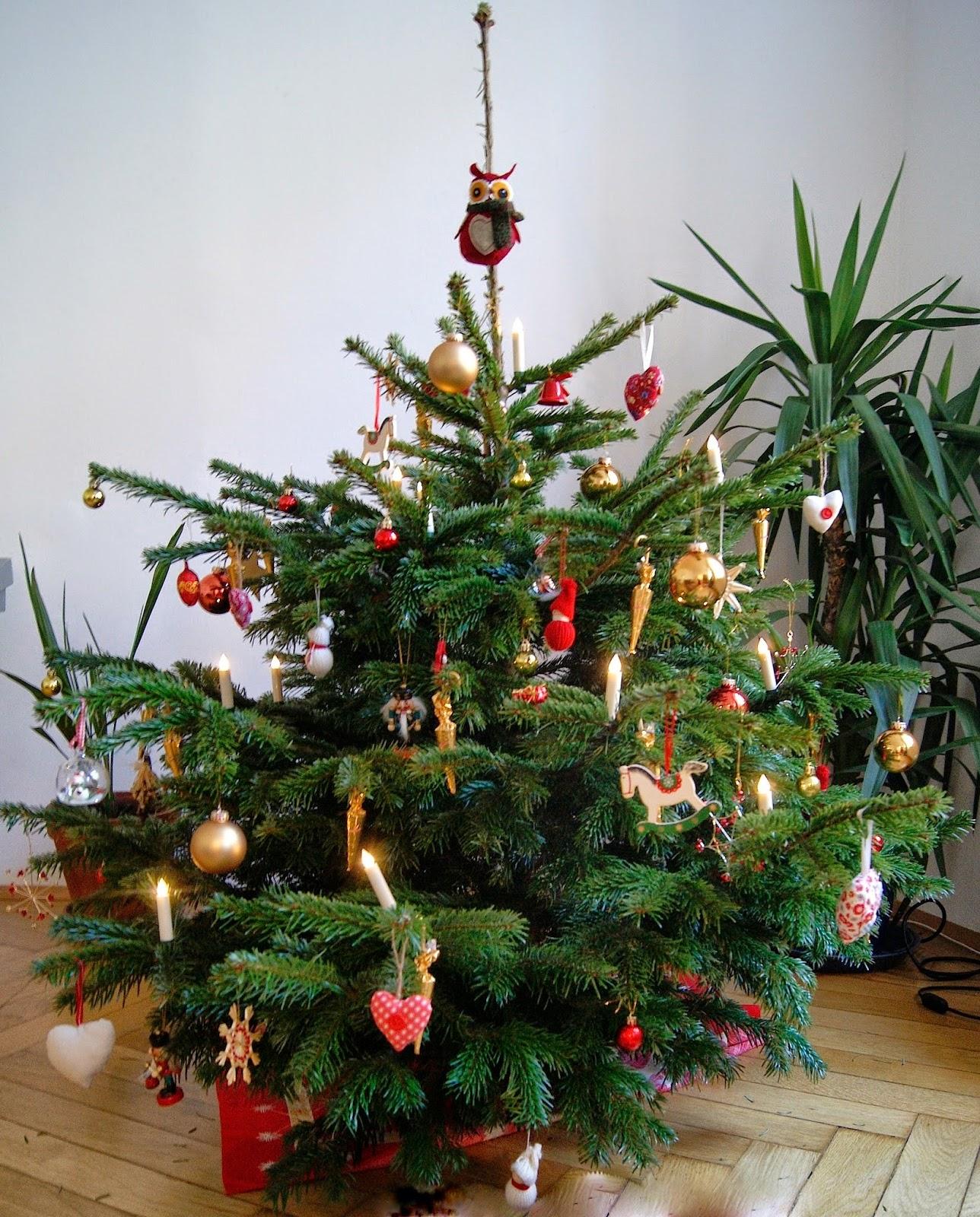 und dann kam irma unser erster weihnachtsbaum. Black Bedroom Furniture Sets. Home Design Ideas
