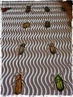 käfer basteln