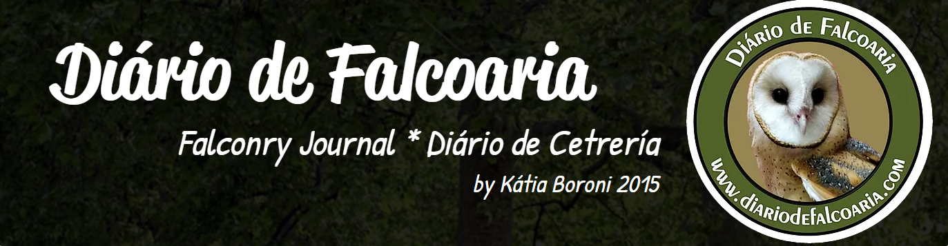 Diário de estudos de Falcoaria