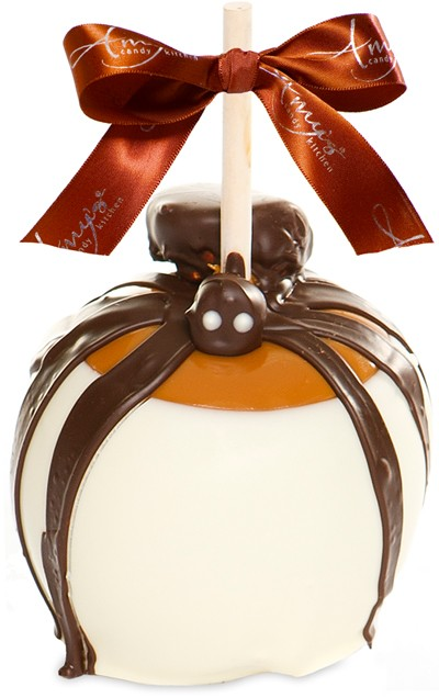 caramel apple creations Amy's gourmet apples