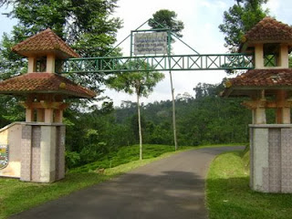 Agrowisata Salak Sodong