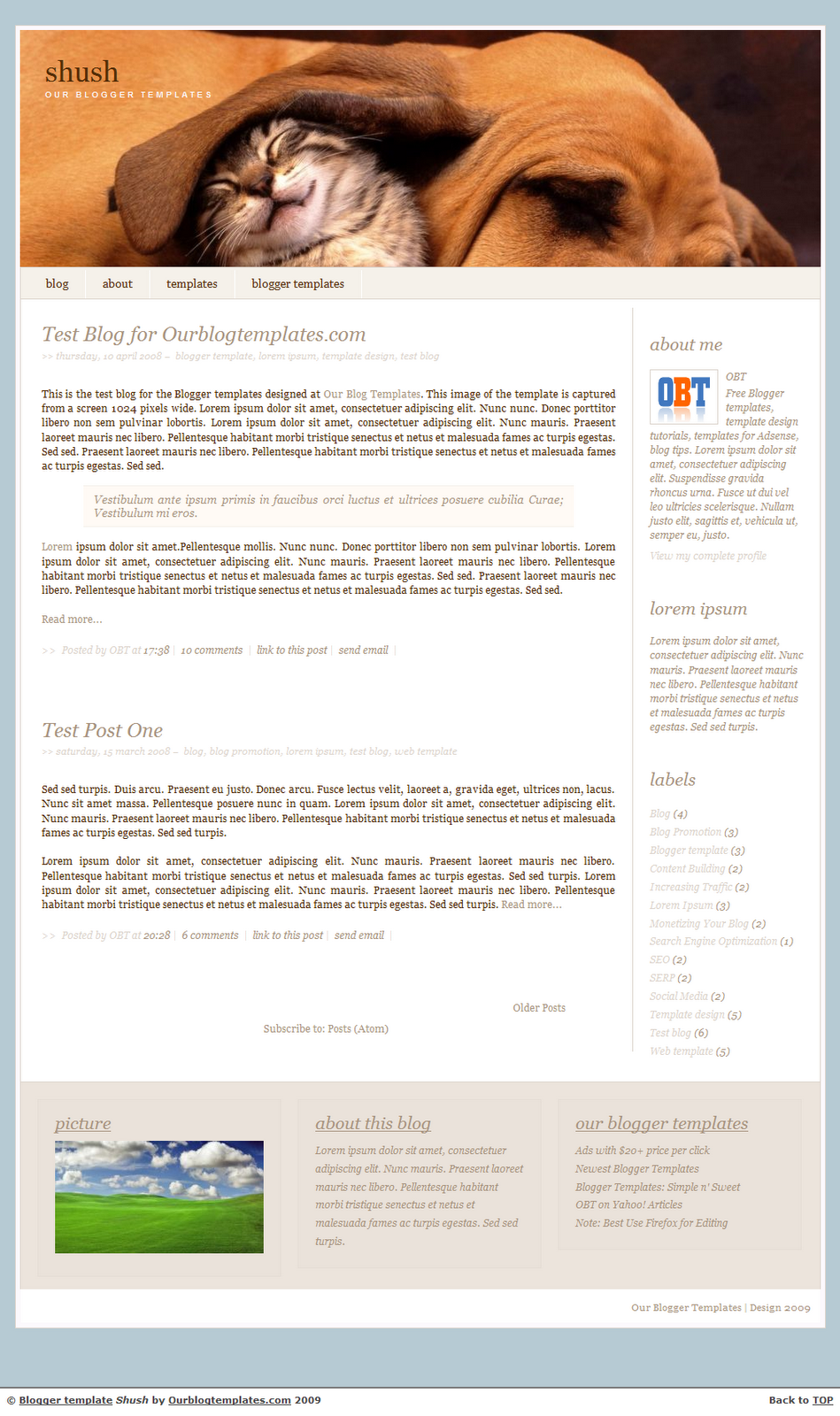 Free Shush Blogger Template