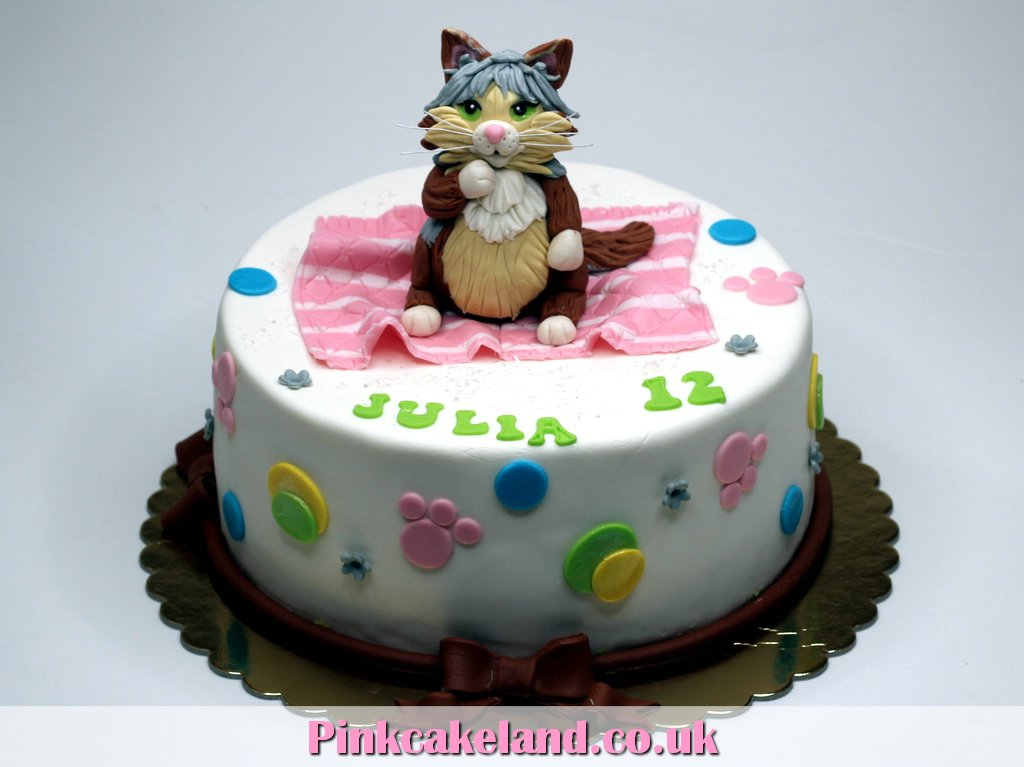Birthday Cake For Your Cat Image Inspiration of Cake and