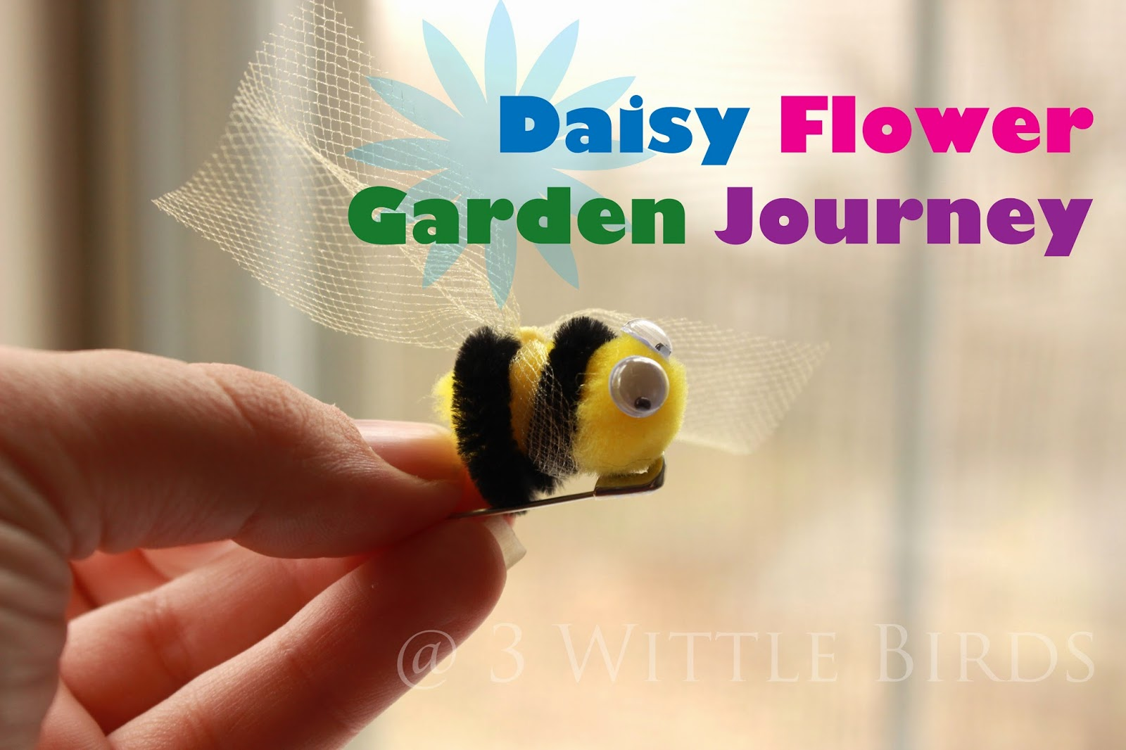 3 wittle birds daisy flower garden journey session 2 daisy flower garden journey session 2 dhlflorist Image collections