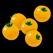 黄色いミニトマト・プチトマトのイラスト