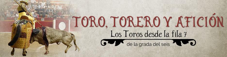 Toro, Torero y Afición