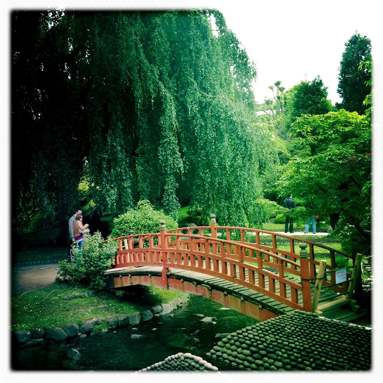 D co jardin japonais boulogne toulon 37 jardin dhiver for Jardin japonais angers