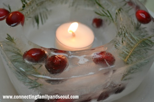 ice lanterns, cranberries