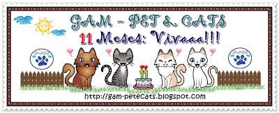 Blog Dona Gam