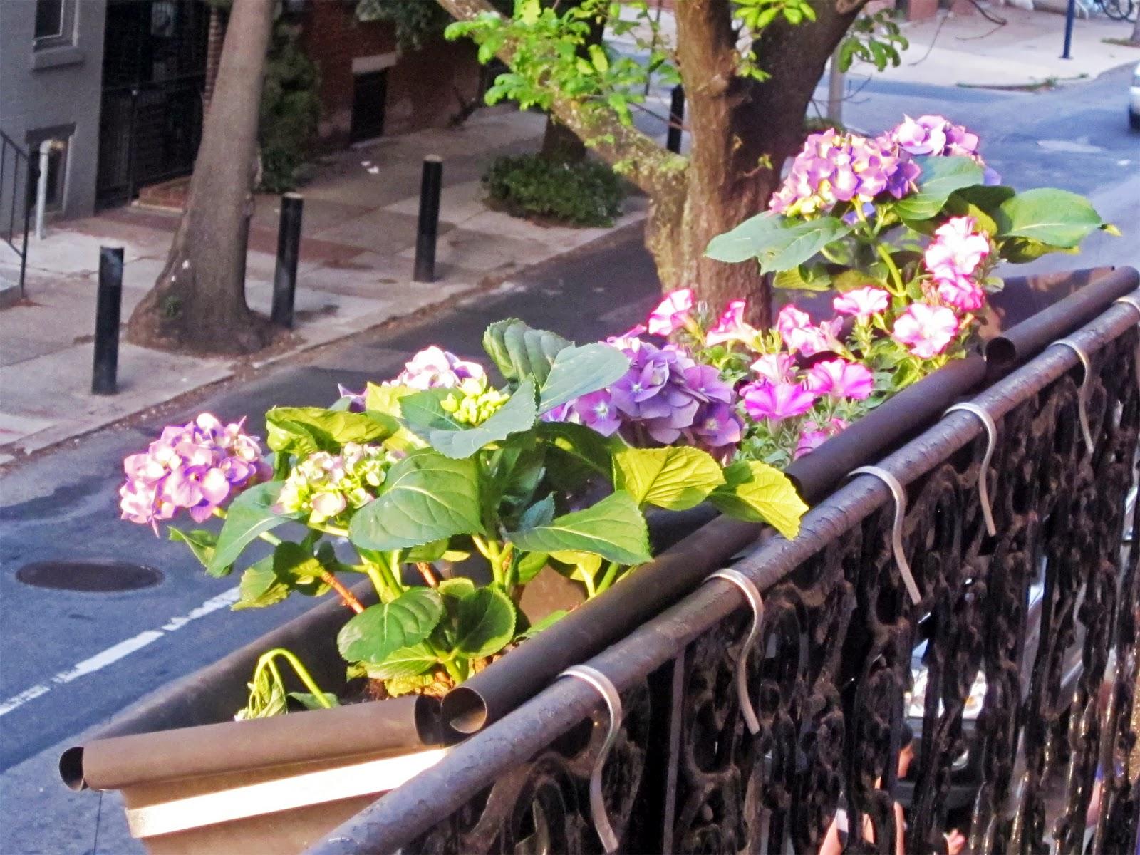 Галерея цветочный блюз - салон цветов в москве. цветы на зак.