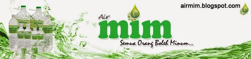 Air MIM