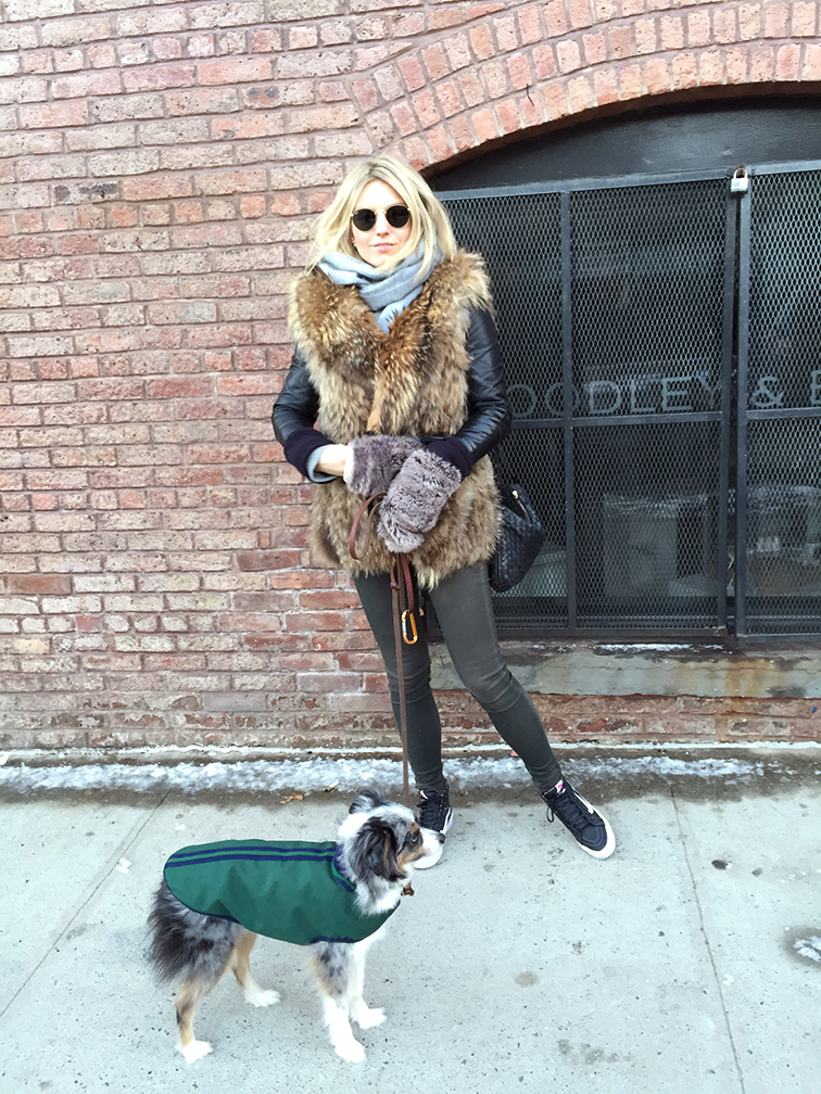 fashion over reason outerwear, Adrienne Landau Fur vest, J Brand jeans, Vans sneakers, Wallyface, mini Aussie, Miniature Australian Shepherd, Bottega Veneta bag, Ray-Ban Lennon sunglasses