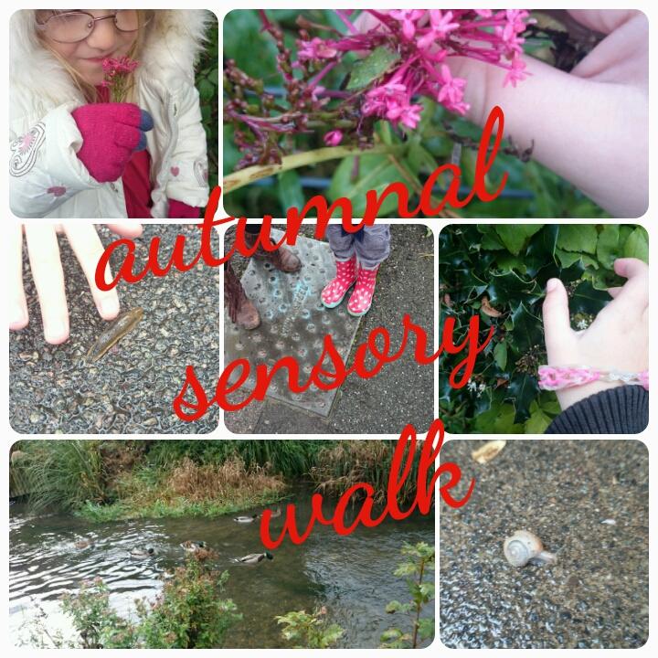 autumnal sensory walk