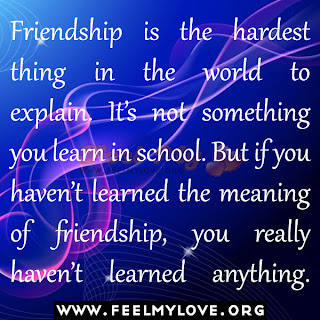 Friendship is the hardest thing in the world to explain