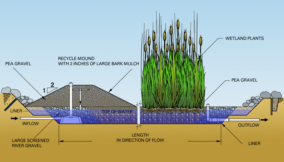 Wetlands Septic System Design