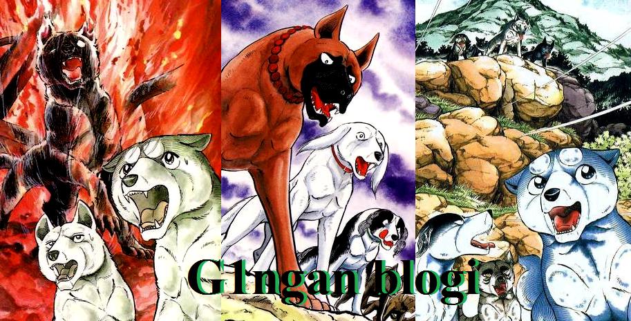 G1ngan blogi