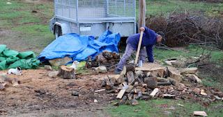 Last little bits of wood are split