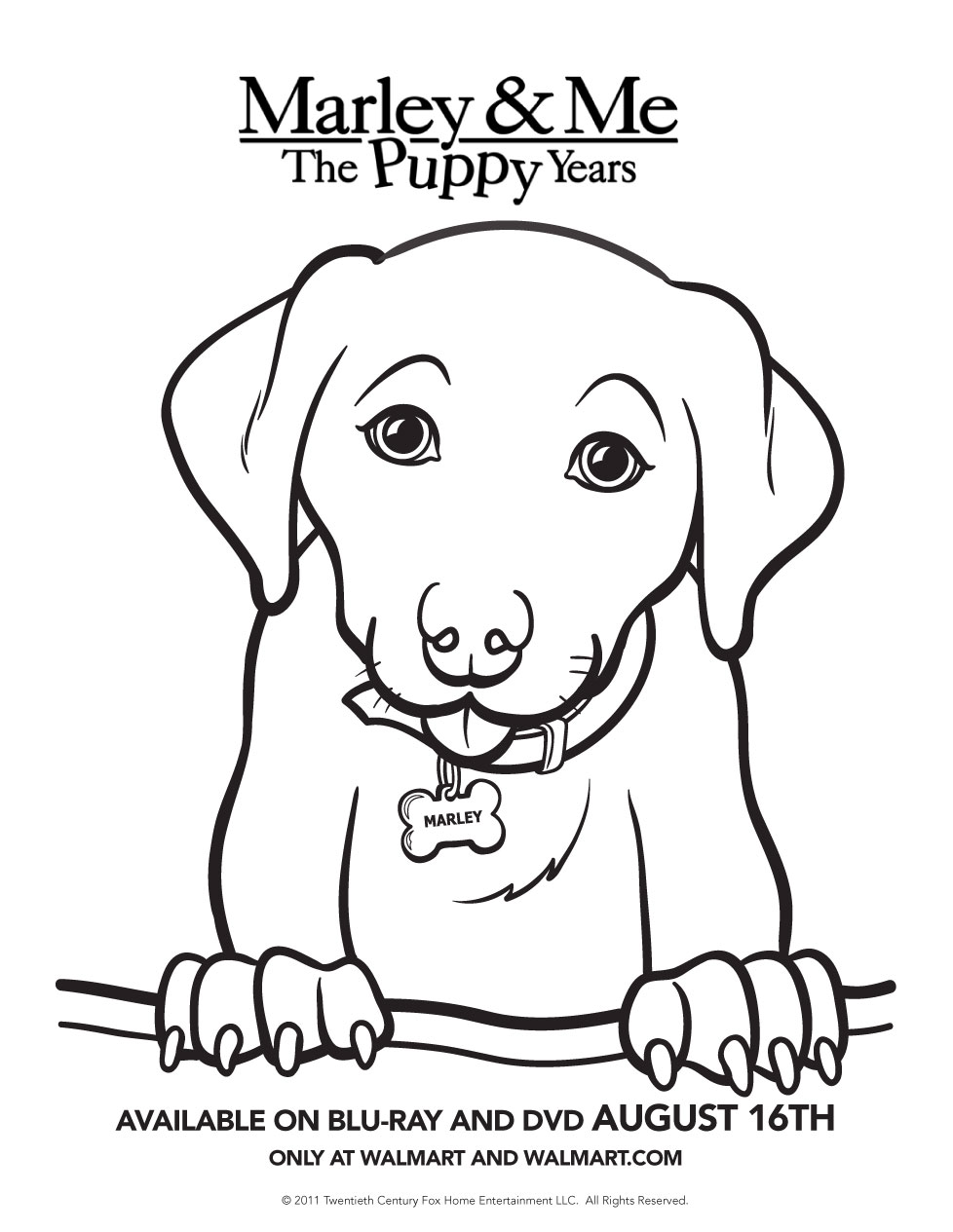Marley & Me: The Puppy Years Printable Activity Sheets, Puzzles and ...