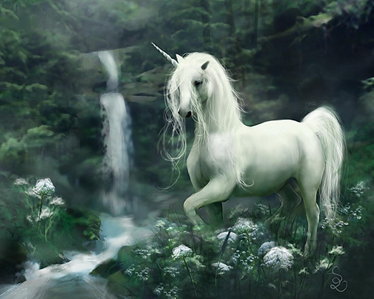 http://1.bp.blogspot.com/-hrrzhtyv0Ro/UQVB3ARbutI/AAAAAAAAAyc/KOXJ-ej_Uuc/s1600/Unicorn-fantasy-30995379-1280-1024.jpg