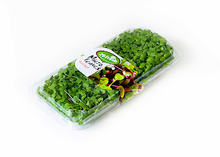 Micro leaves Flora Export S.G. Israel LTD Basil fresh herbs
