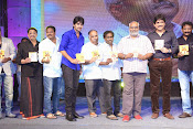 Dikkulu Chudaku Ramayya Audio launch-thumbnail-2