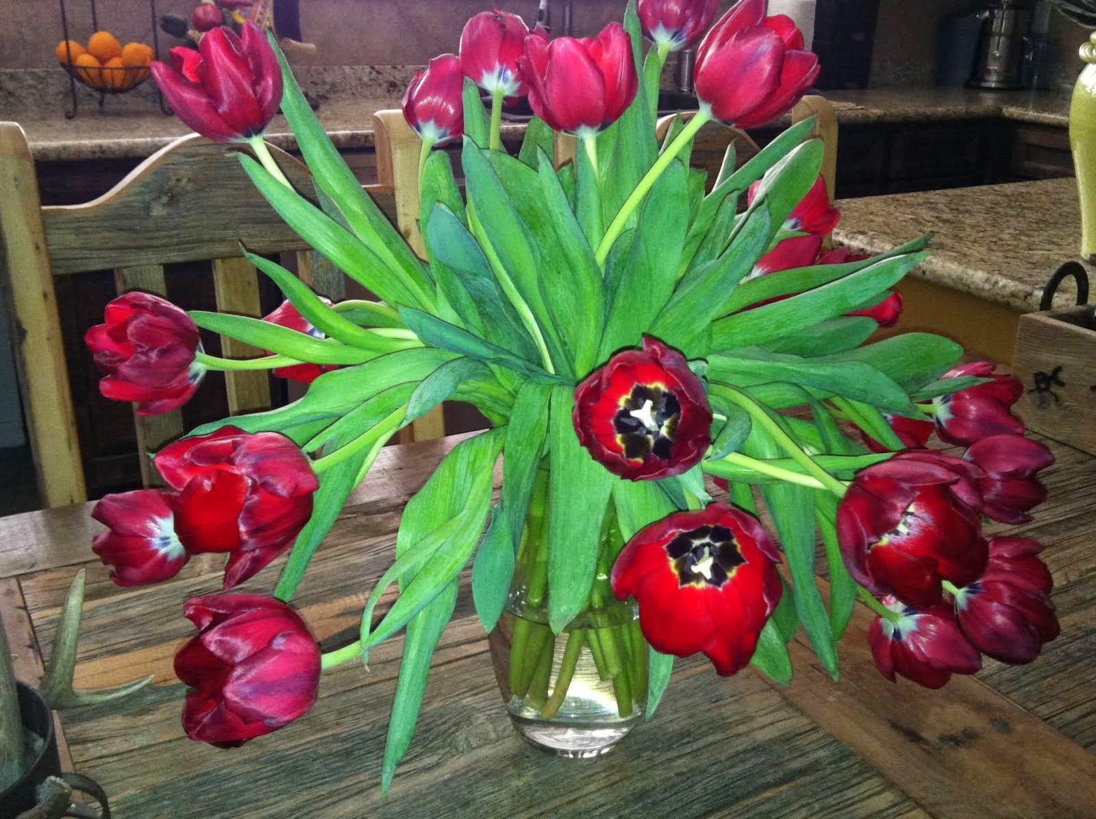 Falling Tulips