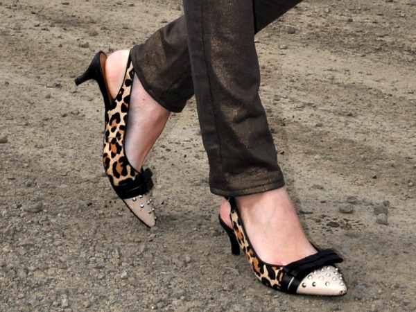Leopard Print Studded Shoes
