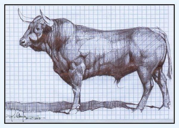 El Toro de Cenicientos: julio 2012