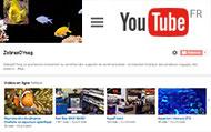 Abonnez-vous à la chaine YouTube !