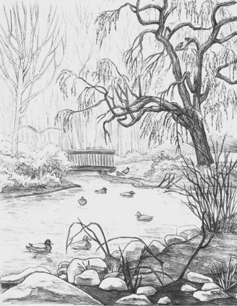 Drawing1: 6. Landscape Drawing- Kim Hunter