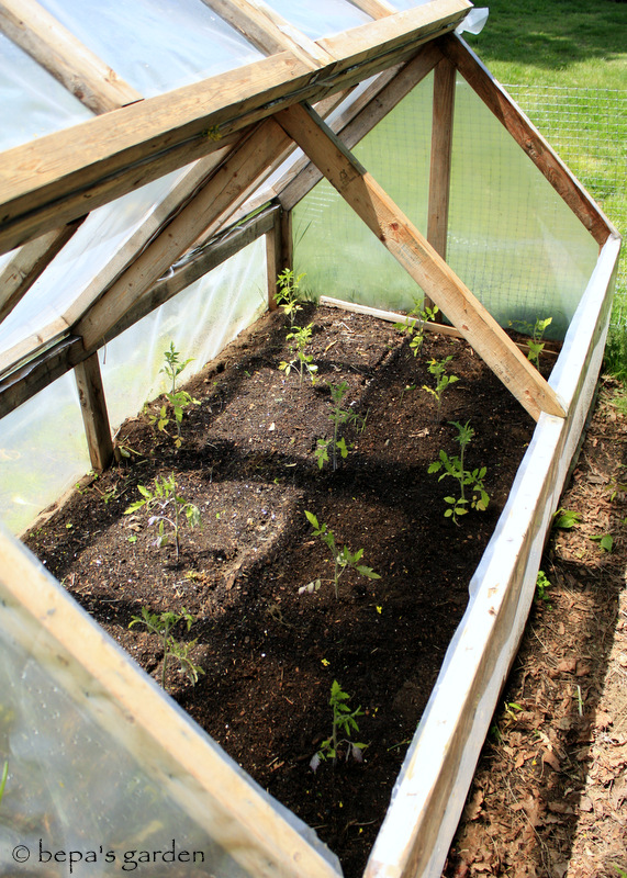 Bepa\'s Garden: Planning for Spring Planting - Cold Frames (mini ...
