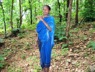 Kapsi Dongar Vana Surakshya Samittee headed by Hara Dei Majhi ensures her forest and trees are living and thriving