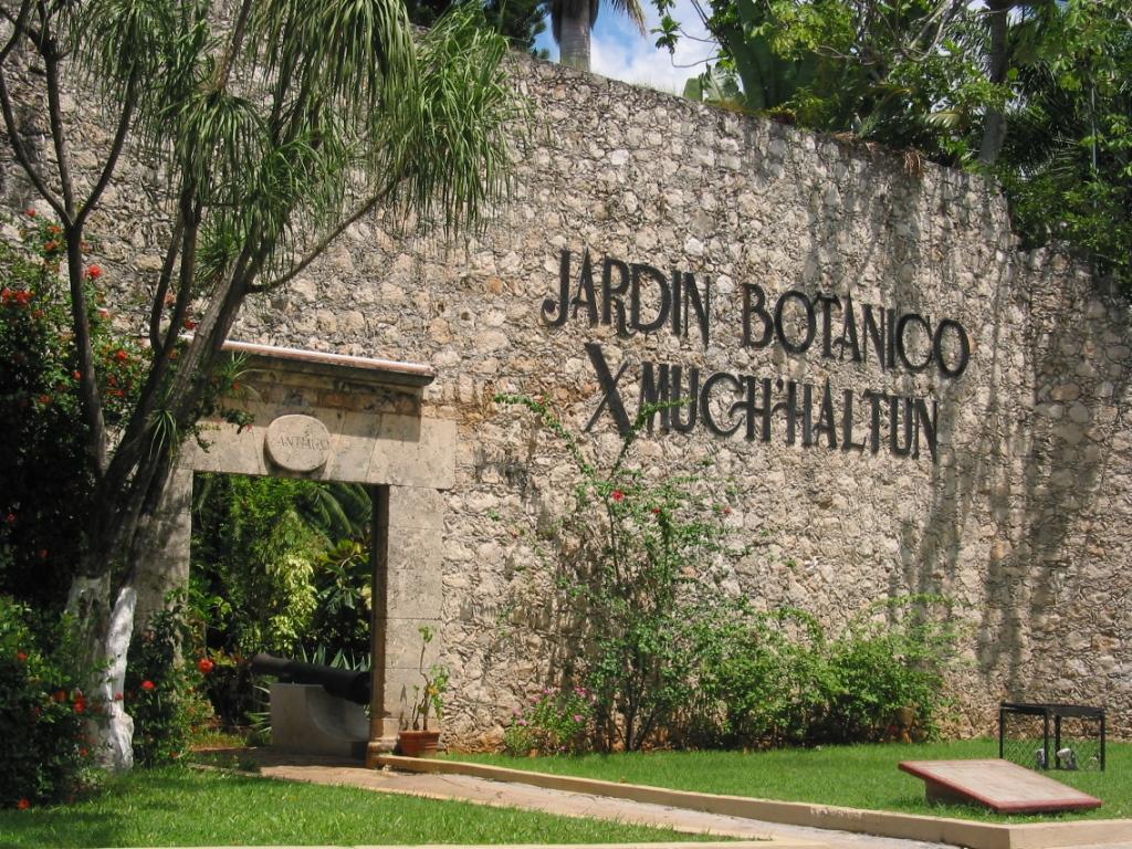Elenajudobumer n baluarte de santiago for Informacion sobre el jardin botanico