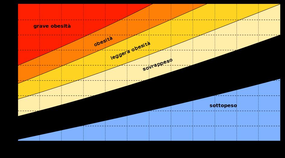 Calcola il tuo indice di massa corporea