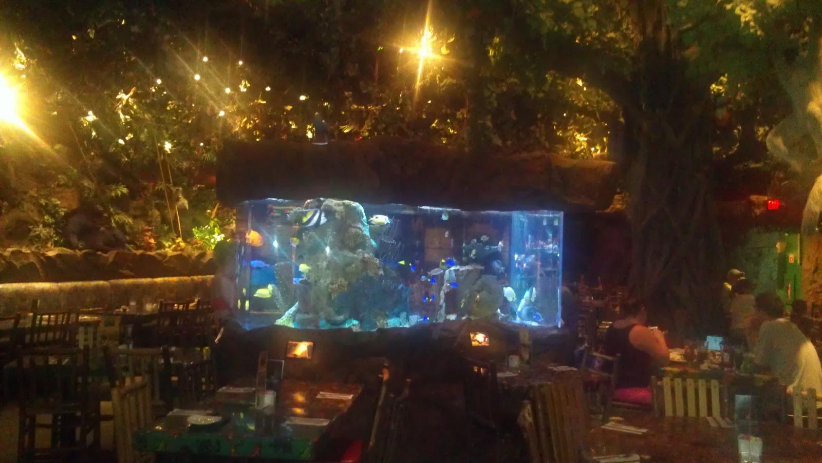 Rainforest Cafe Orlando Opening Hours