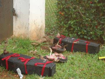 Native doctors place coffins at UNIBEN Bursar's residence 1