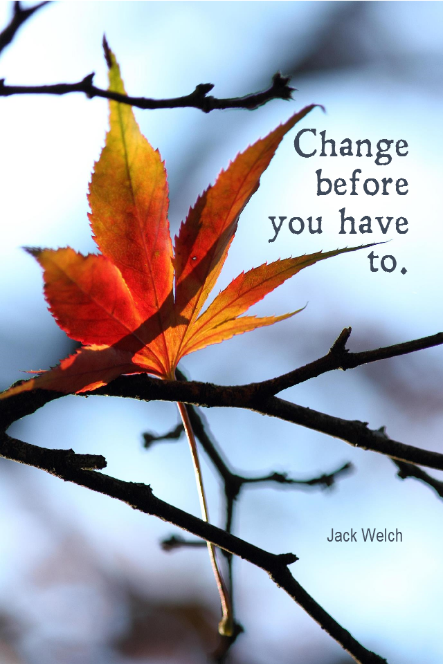 visual quote - image quotation for CHANGE - Change before you have to. - Jack Welch