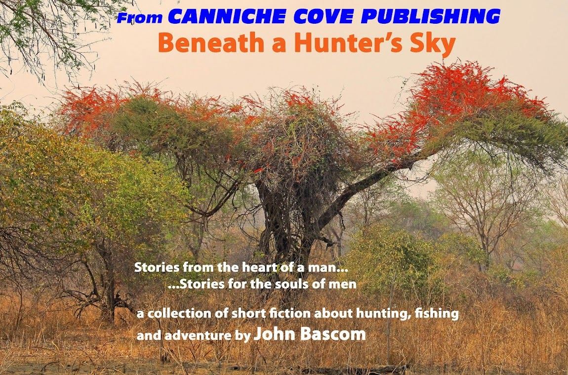 CANNICHE COVE PUBLISHING