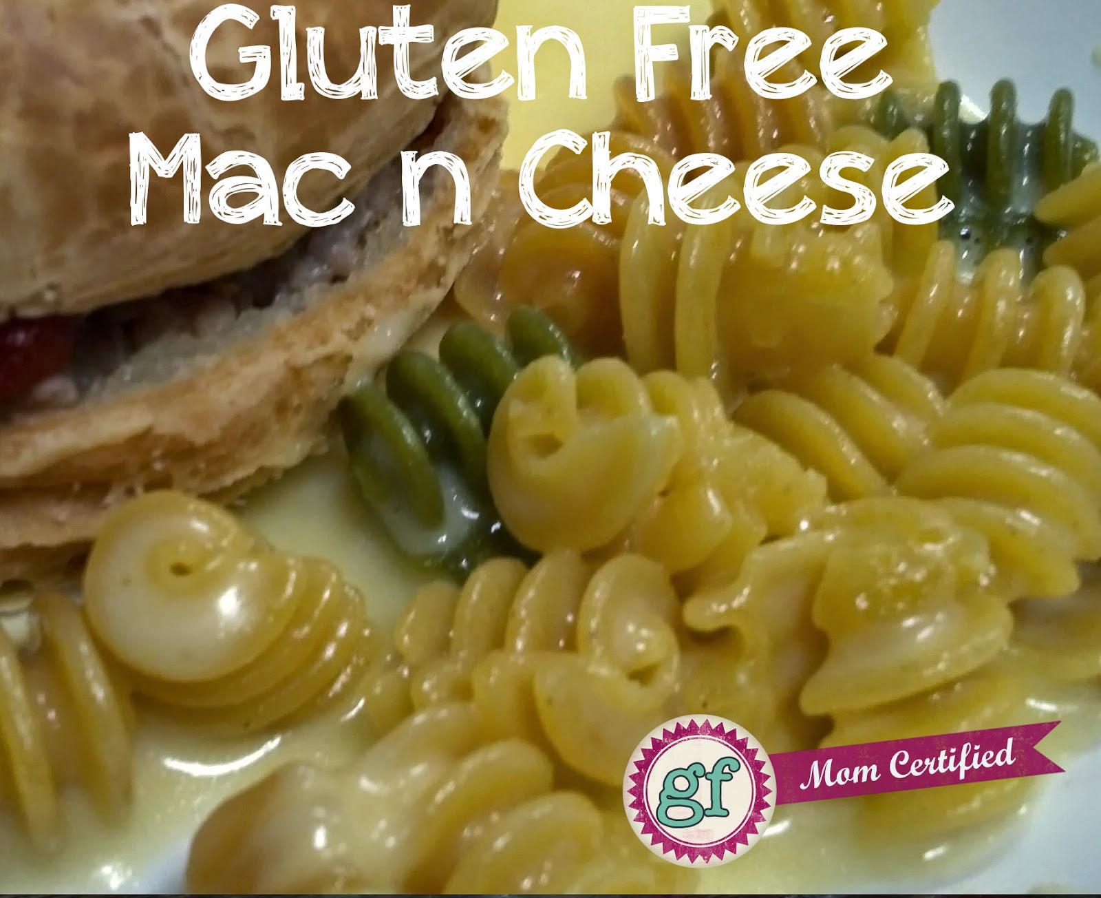 Your Gluten Free Kitchen Solution