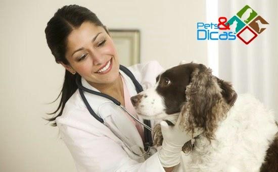 Sarna demodécica e escabiose em cães e gatos