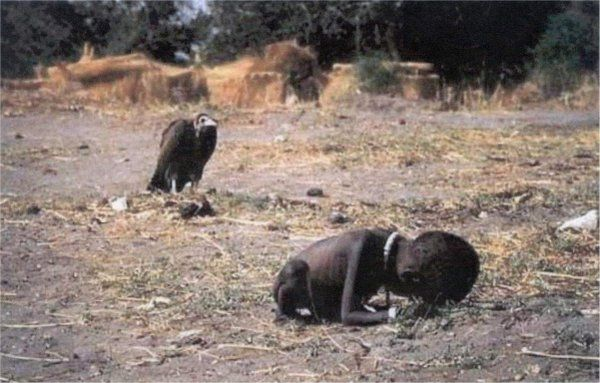 Vulture Waiting for the Malnutritioned Child to Die, 1994