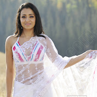 Trisha looking hot in saree