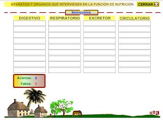 http://www.gobiernodecanarias.org/educacion/3/WebC/eltanque/pizarradigital/AparatoDigestivo/actividades/actividades3_p.html