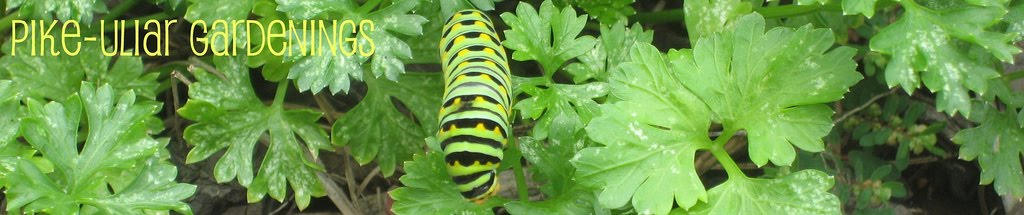 Pikeuliar Gardenings